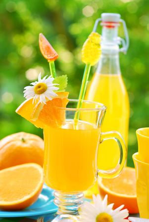 glass of orange juice and fresh fruits on table in the garden Stock Photo - 7141797