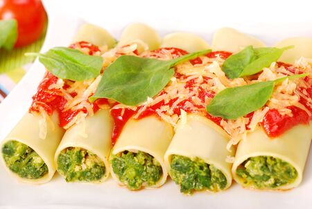 italian cannelloni stuffed with spinach poured tomato sauce