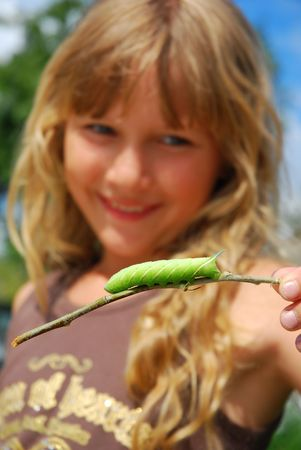 keeping: young girl looking on hawkmoth  caterpillar keeping  on branch  (focus on caterpillar)