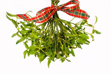 with mistletoe: bunch of hanging  mistletoe with ribbon isolated on white Stock Photo