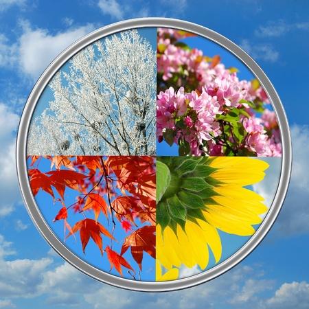 seasons: natuur collage in ronde vorm met vier seizoenen van het jaar op blauwe hemelachtergrond