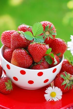 정원에서 테이블에 그릇에 신선한 딸기