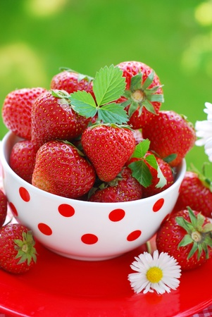 fresh strawberries in bowl on the table in garden Stock Photo