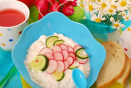 healthy breakfast for child with bowl of cottage cheese,radish and cucumber in fish shape