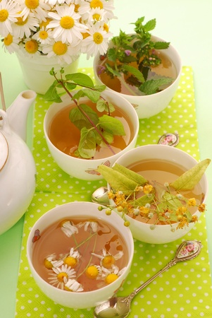 four cups of various herb`s tea-chamomile,linden,mint and nettle Stock Photo - 9958964