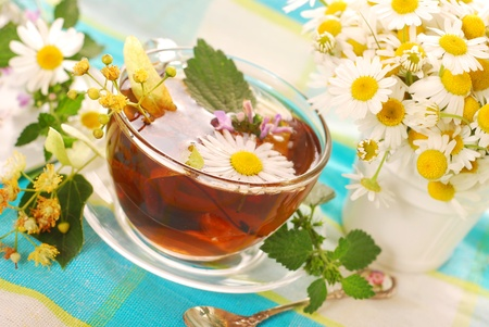 glass of various herb`s tea-chamomile,linden,mint and nettle Stock Photo - 9958965