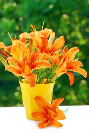 orange lily: bunch of orange day-lily in yellow vase against green trees