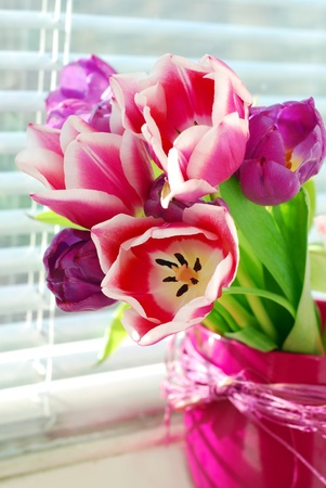 bunch of fresh pink and purple tulips in vase standing on the windowsill Stock Photo