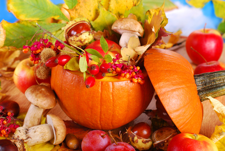 autumn nature harvest decoration in the pumpkin for thanksgiving day photo