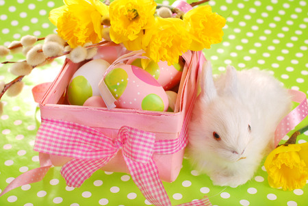 pink easter basket with eggs and white bunny on green dotted background photo