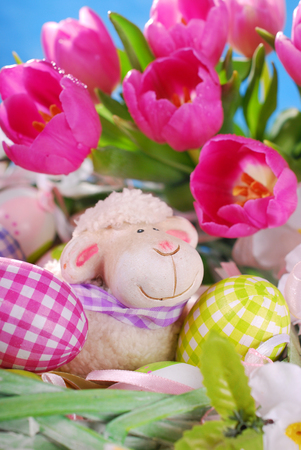 easter basket decoration with eggs,sheep and fresh pink tulips on blue background photo