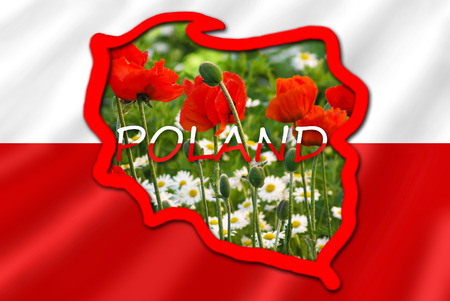 polska: stylized map of Poland on white and red flag filled with image of typical for this country flowers in the meadow Stock Photo