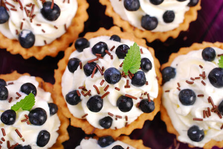 delicious blueberry tartlets with whipped cream and chocolate sprinkles-top view photo