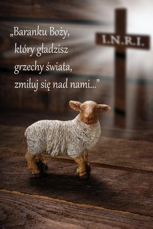 """sacrificio: Concepto de Pascua con la cruz en los rayos de luz y cordero como símbolo de sacrificio ofrecido a Dios con el texto en polaco -  """"Oh Cordero de Dios ... """" Foto de archivo"""