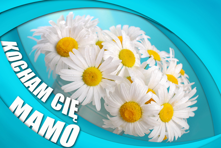 mammy: greeting card for mothers day with a bunch of camomile flowers and text