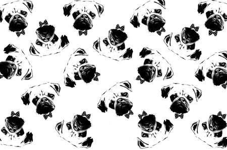 cute graphic: black and white graphic style portrait of cute pug dogs as background Stock Photo