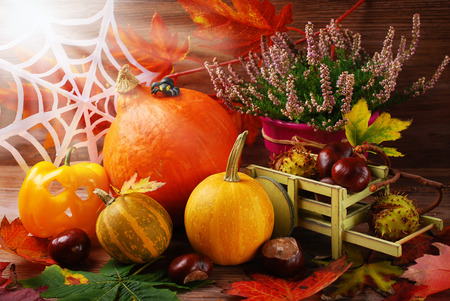 wood spider: Autumn harvest still life with halloween decoration, pumpkins, leaves, chestnuts and heather flowers
