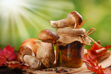 pickled: some fresh porcini and jar of homemade pickled mushrooms in a sunny garden Stock Photo