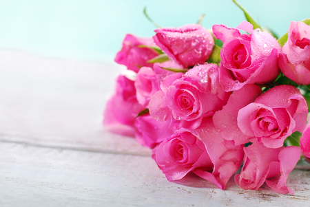 bunch of pink roses lying on right side and space for own text on left