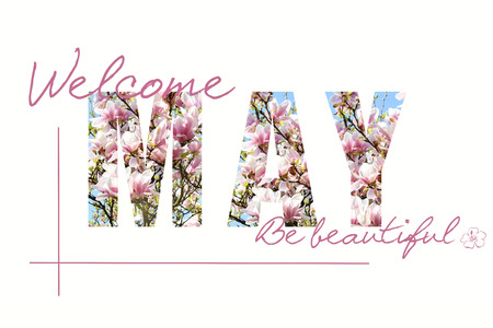 welcome May background with magnolia pattern letters isolated on white Stockfoto - 123714270
