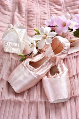 flat lay with pink ballet pointe shoes and magnolia flowers lying on tulle dress Stockfoto - 123714274