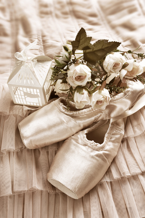 flat lay with pink ballet pointe shoes and roses lying on tulle dress Stockfoto - 123714280