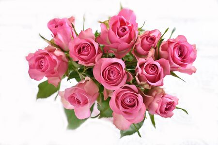 top view of the bunch of fresh pink roses isolated on white Banco de Imagens