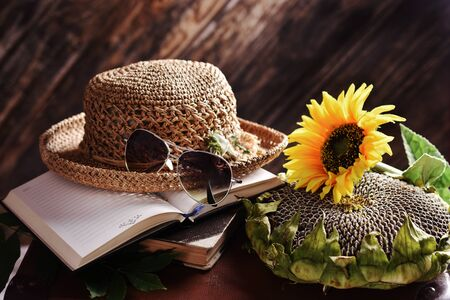 rural summer still life with straw hat, books, sunflower and seeds lying on old suitcase in the dark