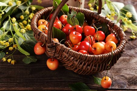 wicker basket full of yellow and red cherries on rustic wooden table