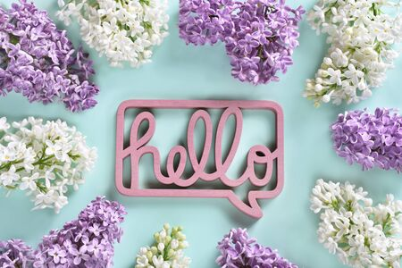 hello spring background with white and purple lilac blossom branches around the picture and Hello callout bubble in the middle