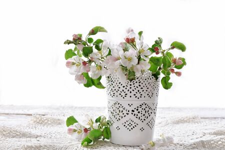 beautiful fresh spring apple blossoms in vase isolated on white with space for own text