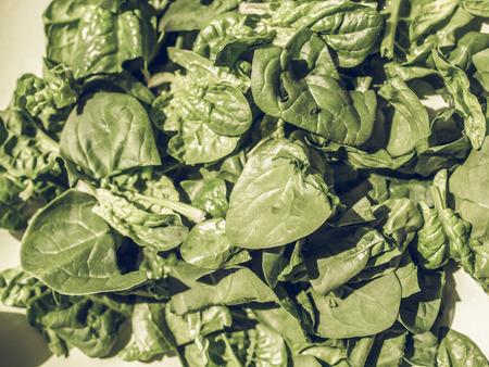 edible leaves: Vintage faded Green spinach leaves edible flowering plant vegetarian food