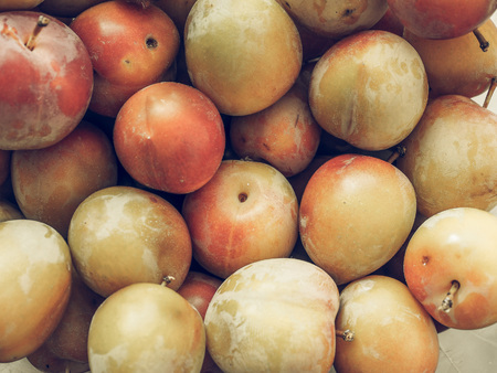 prune: Vintage faded Prune fruits vegetarian and vegan food useful as a background