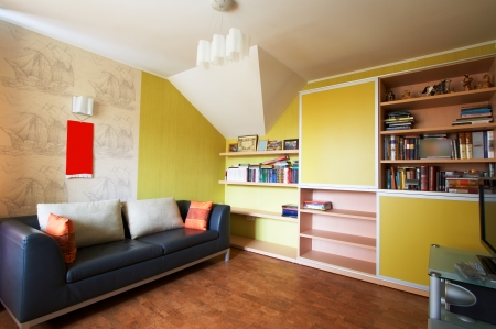 Sofa with pillows and a bookcase in an apartment
