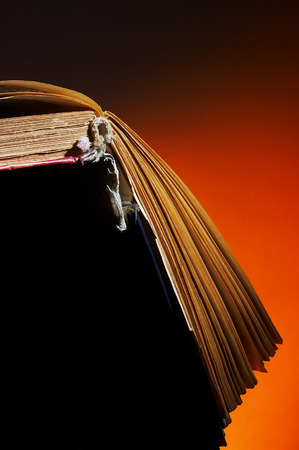legislators: The opened old book on an orange background