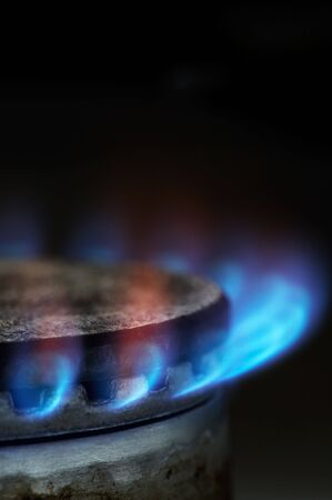 gaseous: Gas burning by a dark blue flame on modern kitchen