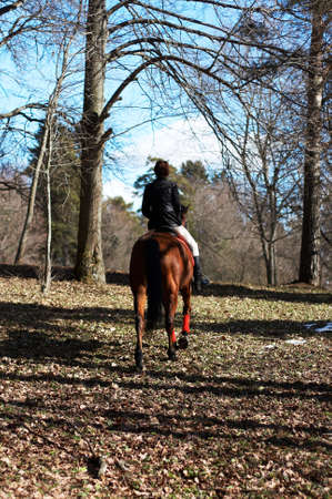 The girl on a horse in spring to a wood Stock Photo - 2665004