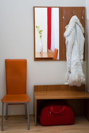 house coats: hall-stand and coat in a corridor to a modern apartment