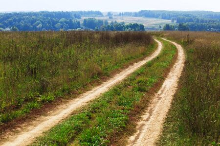 country road leading across the field to the distant forest Stock Photo - 5545539