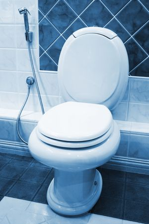 new toilet bowl in a modern bathroom Stock Photo - 6249836