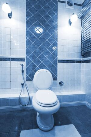 new toilet bowl in a modern bathroom Stock Photo - 7123986