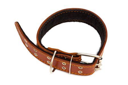 restraining: Leather dog collar on a white background Stock Photo