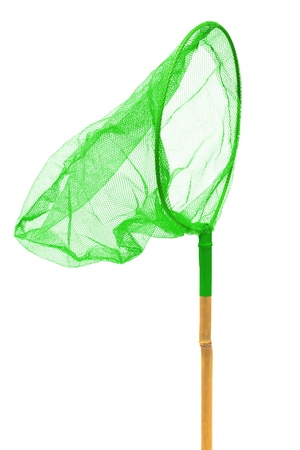 butterfly net: green butterfly net on a white background Stock Photo