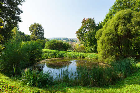 a small pond a bright sunny day Stock Photo - 13978107
