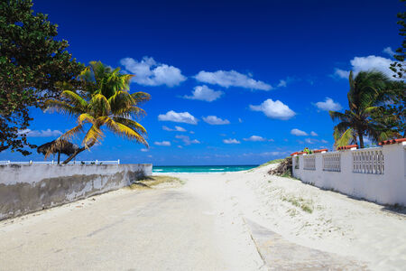 caribbean climate: road covered with the sand by the sea