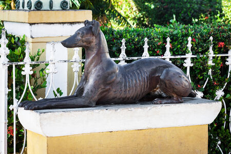 statuary garden: old sculpture of a dog on a sunny day