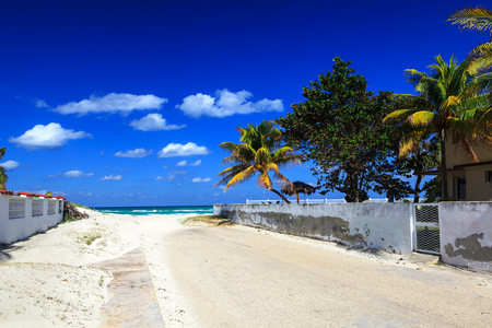 caribbean climate: sandy road overlooking the beautiful sea