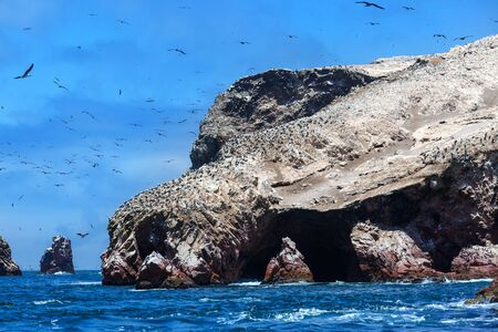 ocean and sea: ocean, islands and birds on a sunny day