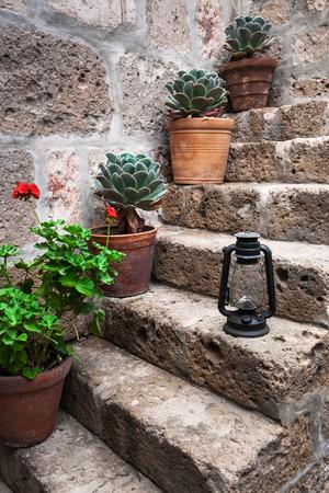 kerosene lamp: kerosene lamp and plant in a old staircase Stock Photo