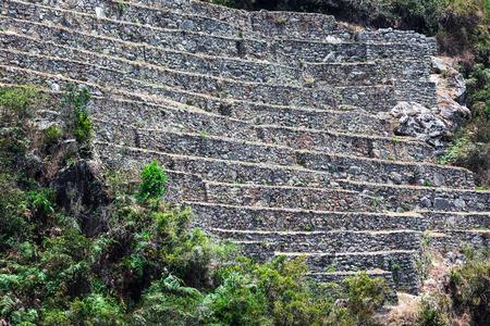 machu picchu: ruins of terraces on the mountain of Machu Picchu